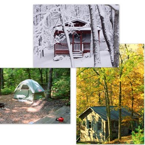 Cabin collage small