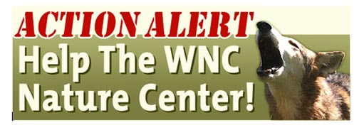 wnc-naure-center
