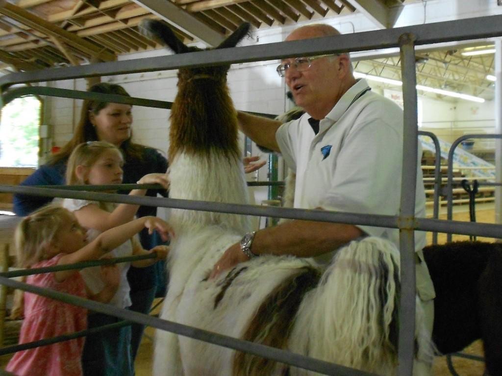 Llama Farmer