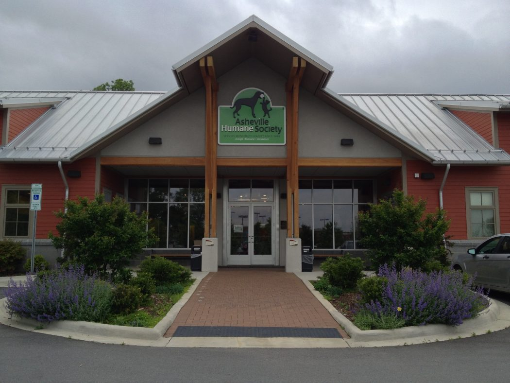 Asheville Humane Society Announces Record Breaking Success