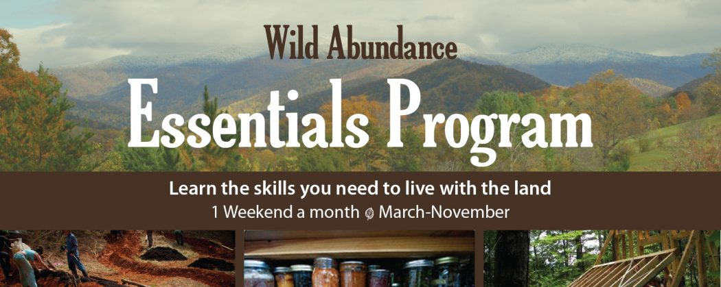 Wild Abundance Essentials Program