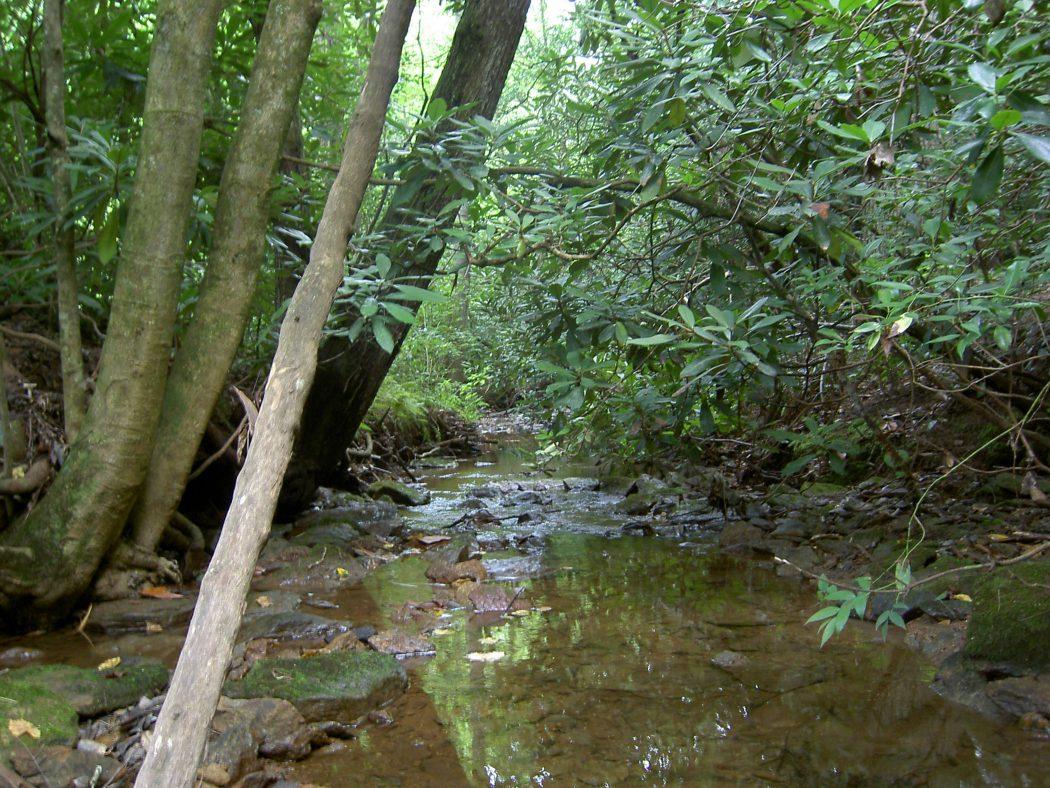 Duke Energy Catawba Watershed