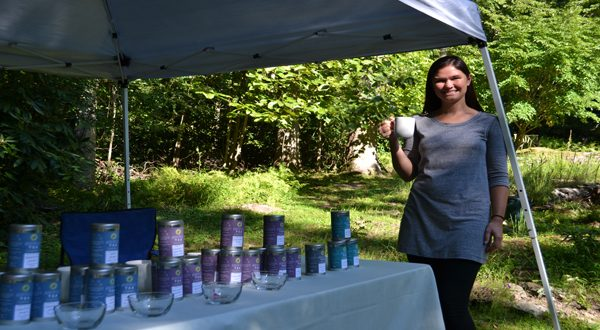 asheville tea company
