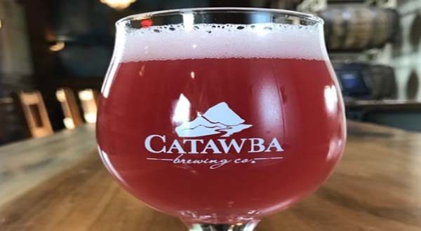 catawba raspberry sour