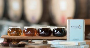 Beer & Chocolate Pairing at Catawba Brewing