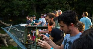 Tap Into Your Wild Side at the Brews and Bears Summer Event Series