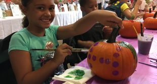43rd Annual Hey Day Fall Festival at the WNC Nature Center