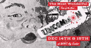 Uncommon Market Holiday 5th Year in Asheville