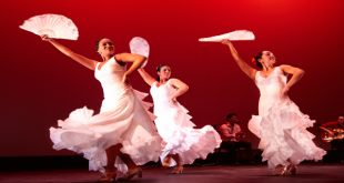 Flamenco Vivo at the Wortham Center Feb 14-15 2020
